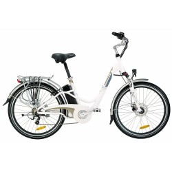 Bicycle Electric MONTY E48